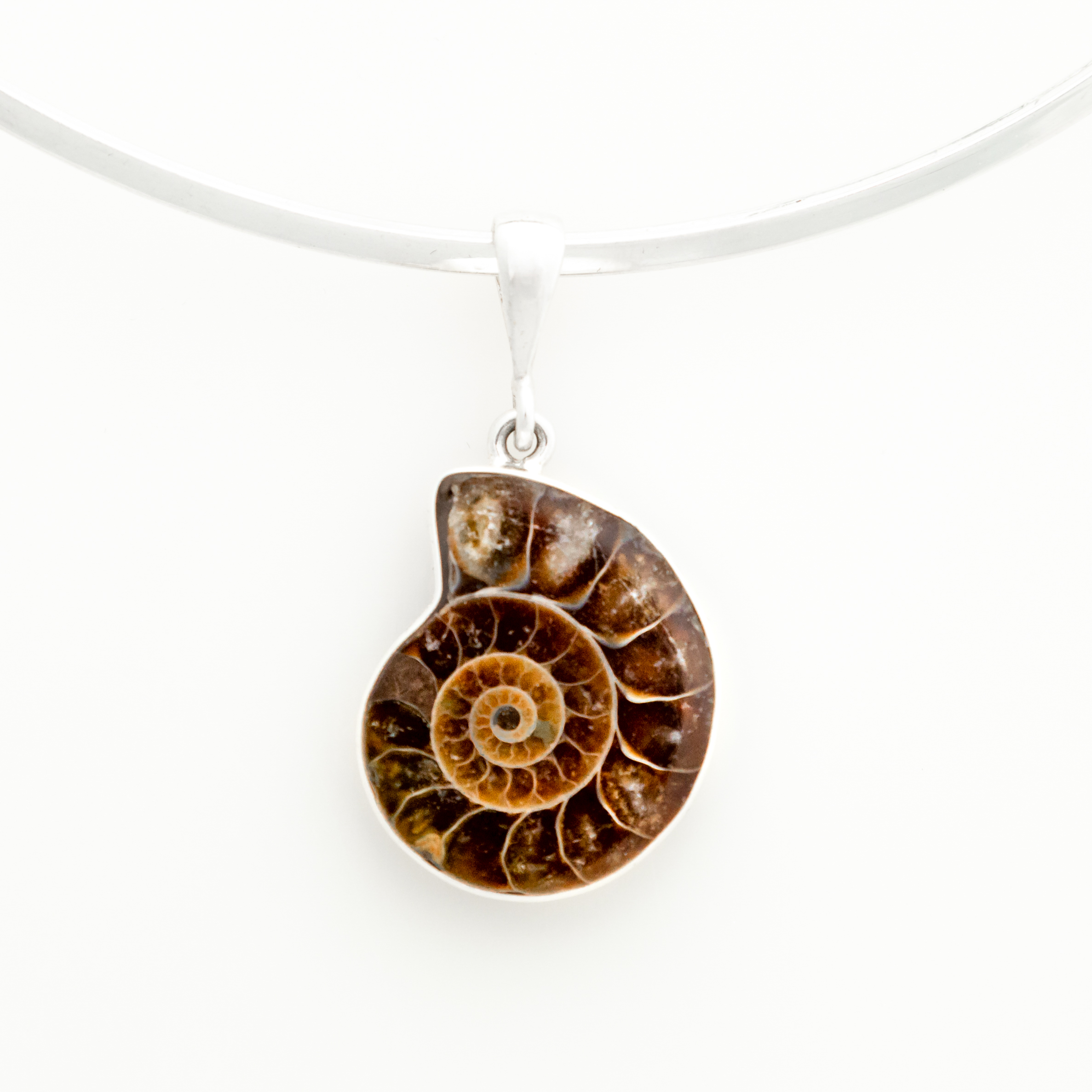 Glossy Ammonite Sterling Silver Pendant