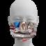 Fordite Raw Stones Mask